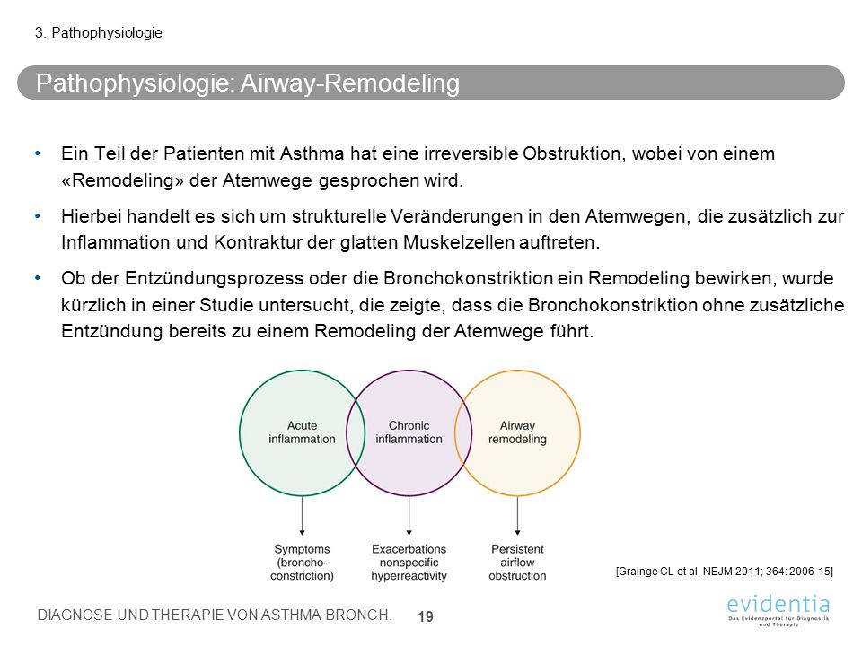 Pathophysiologie: Airway-Remodeling
