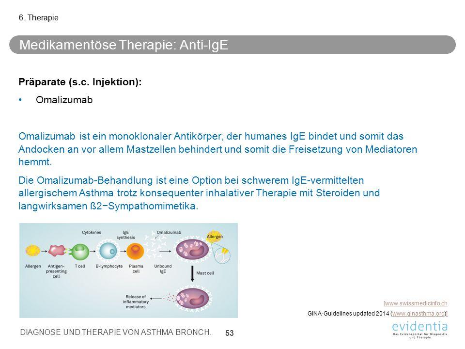 Medikamentöse Therapie: Anti-IgE