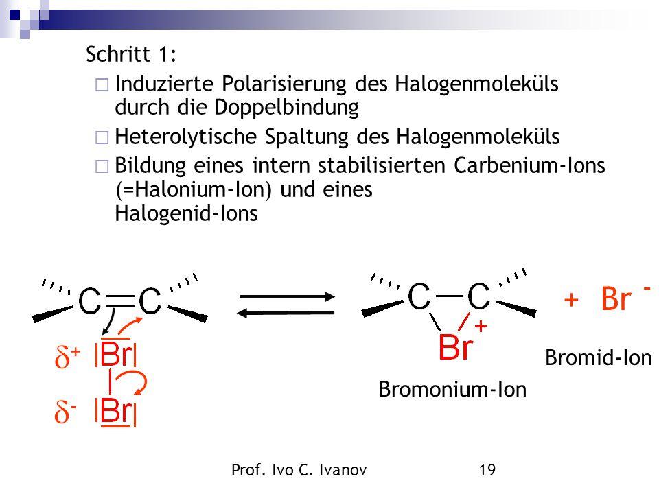 Schritt 1: Induzierte Polarisierung des Halogenmoleküls durch die Doppelbindung. Heterolytische Spaltung des Halogenmoleküls.