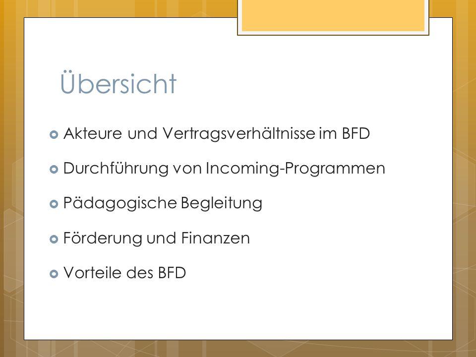 Übersicht Akteure und Vertragsverhältnisse im BFD