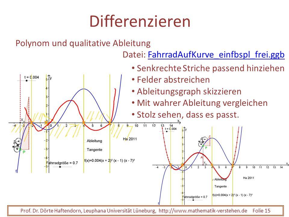 Differenzieren Polynom und qualitative Ableitung