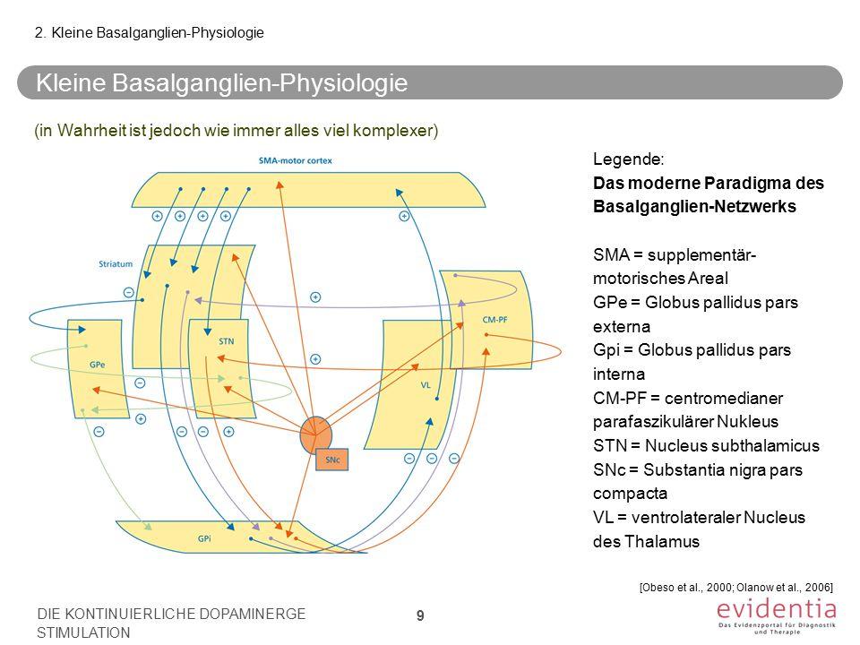 Kleine Basalganglien-Physiologie