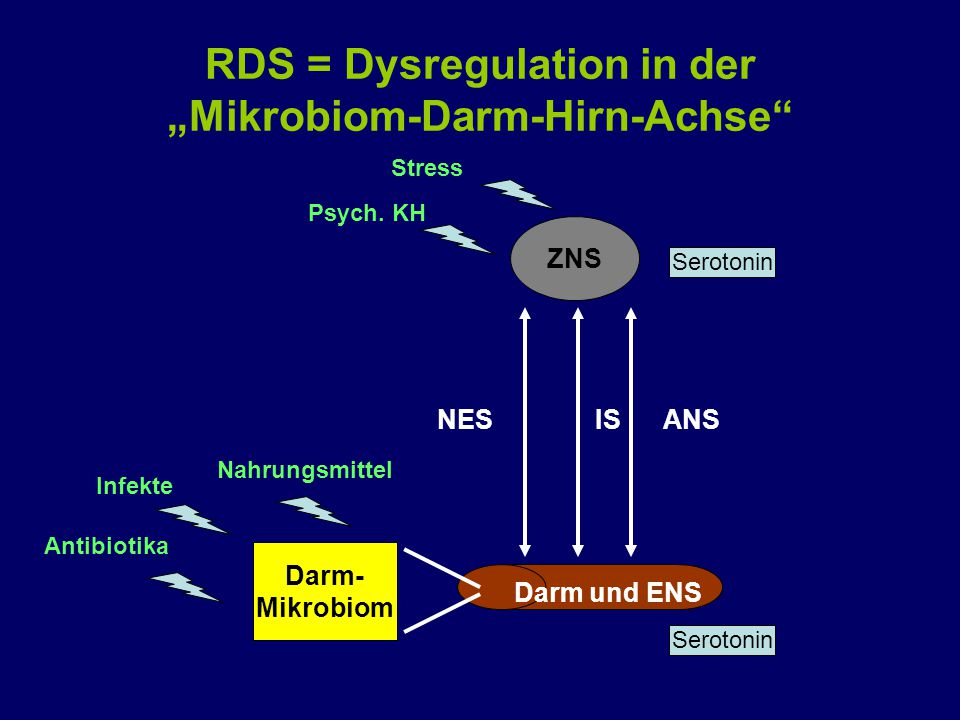"RDS = Dysregulation in der ""Mikrobiom-Darm-Hirn-Achse"