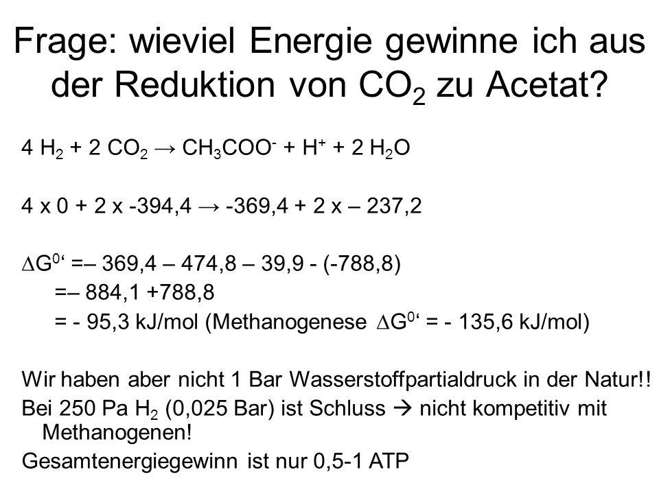 Frage: wieviel Energie gewinne ich aus der Reduktion von CO2 zu Acetat