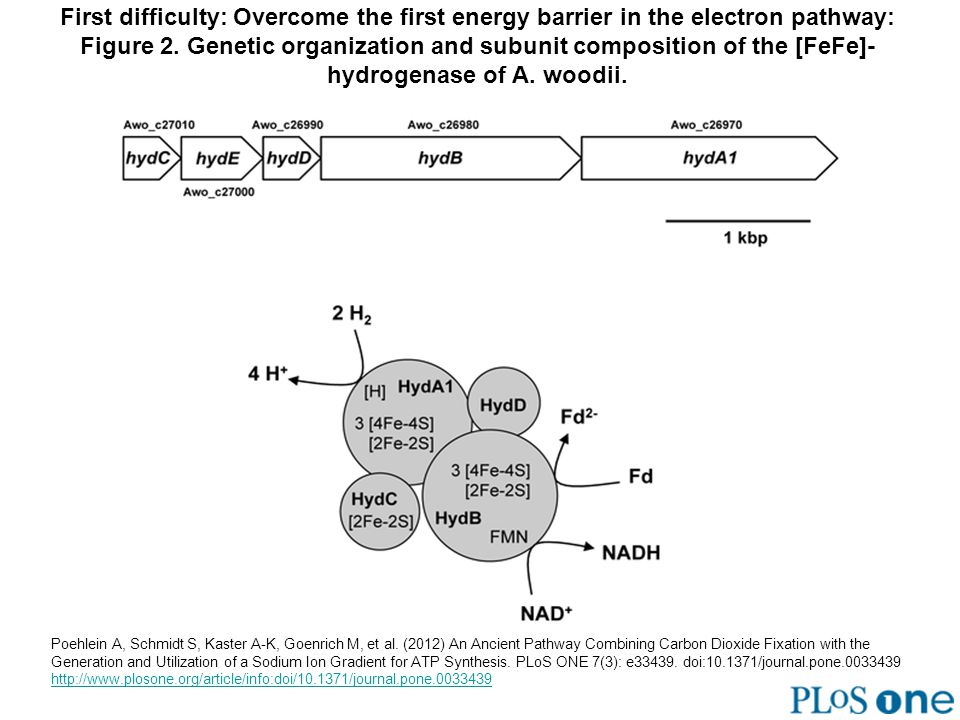 First difficulty: Overcome the first energy barrier in the electron pathway: