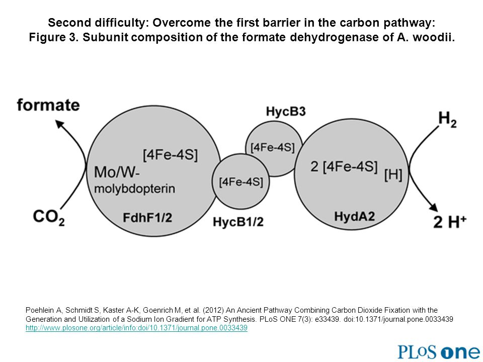 Second difficulty: Overcome the first barrier in the carbon pathway: