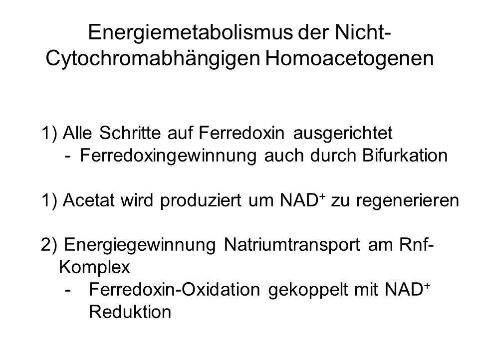 Energiemetabolismus der Nicht-Cytochromabhängigen Homoacetogenen