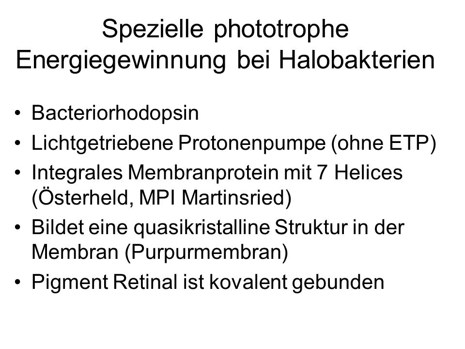 Spezielle phototrophe Energiegewinnung bei Halobakterien