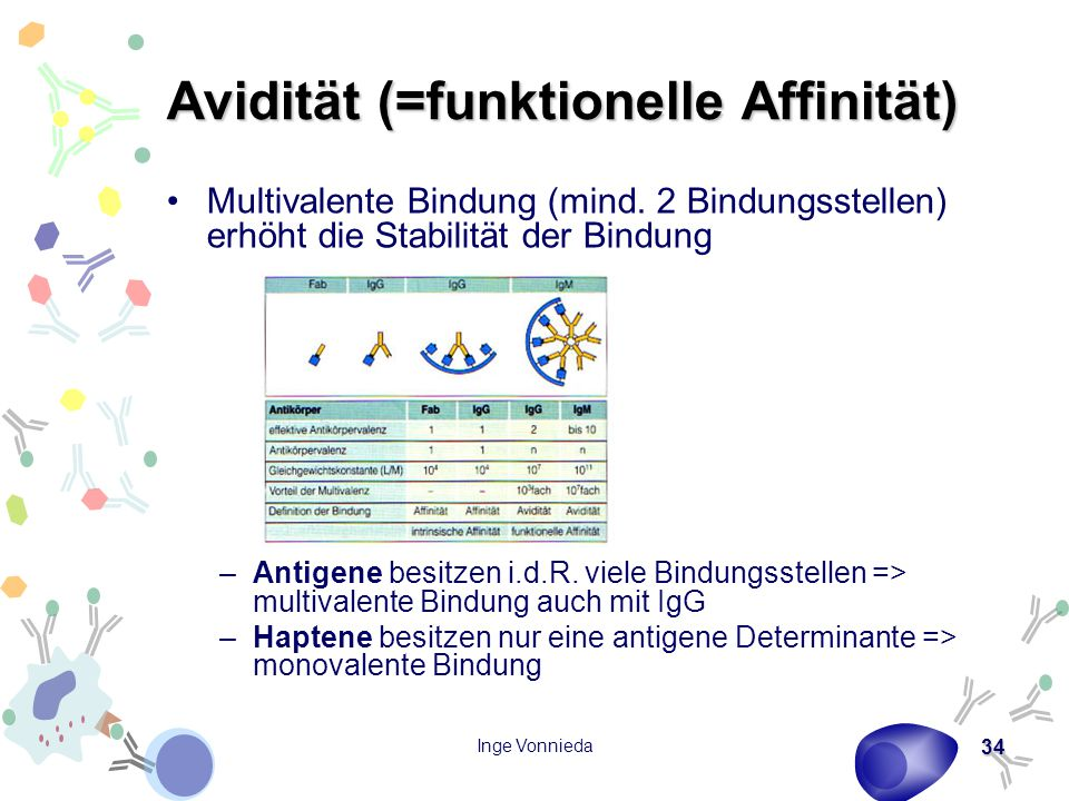 Avidität (=funktionelle Affinität)
