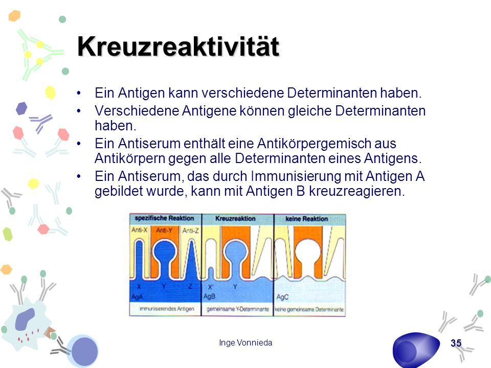 Kreuzreaktivität Ein Antigen kann verschiedene Determinanten haben.