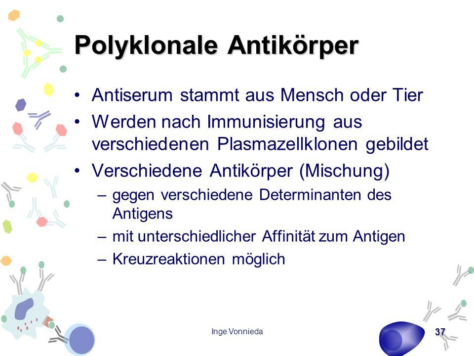 Polyklonale Antikörper