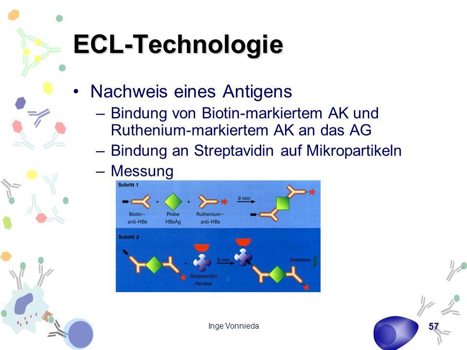 ECL-Technologie Nachweis eines Antigens