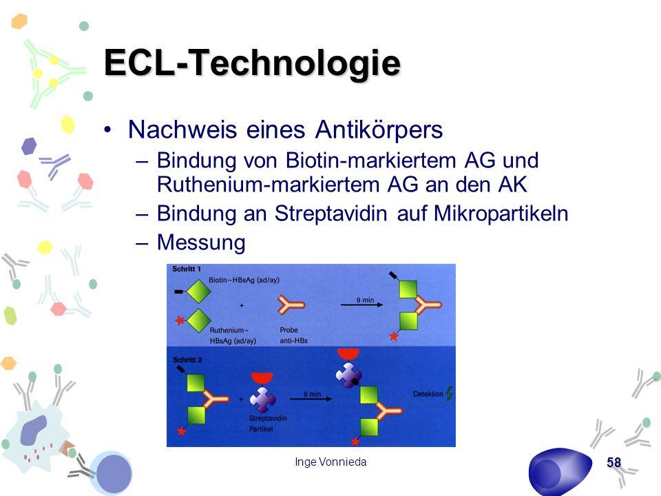 ECL-Technologie Nachweis eines Antikörpers