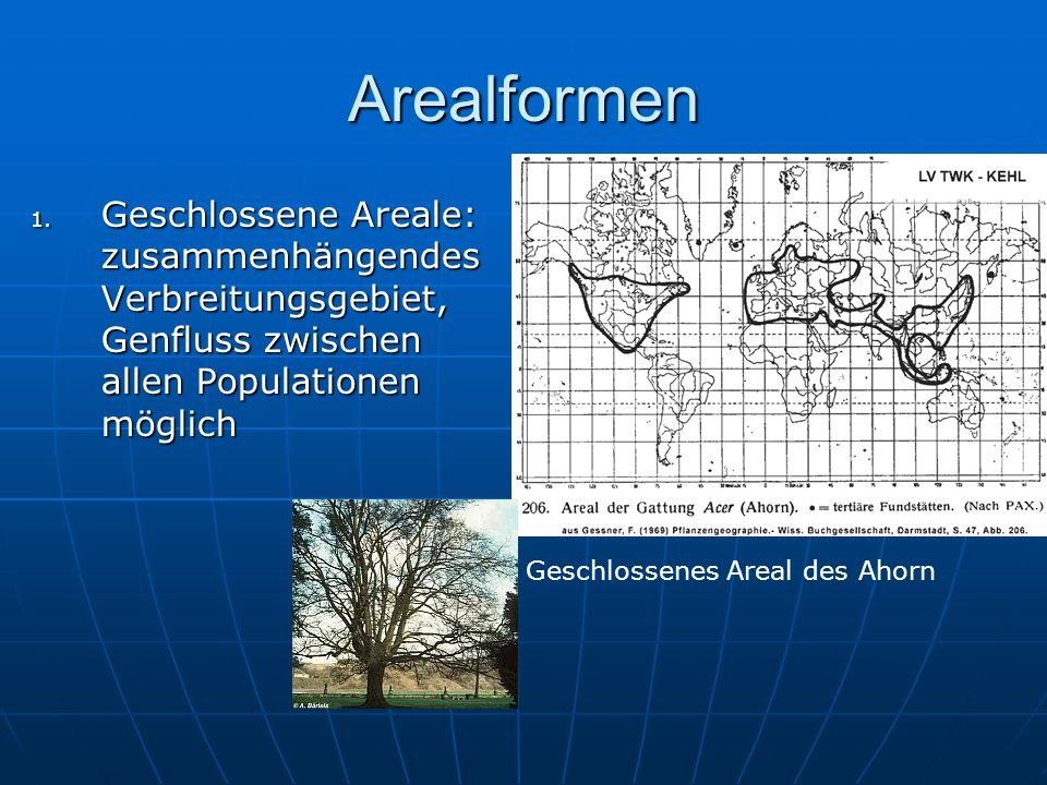 Arealformen Geschlossene Areale: zusammenhängendes Verbreitungsgebiet, Genfluss zwischen allen Populationen möglich.