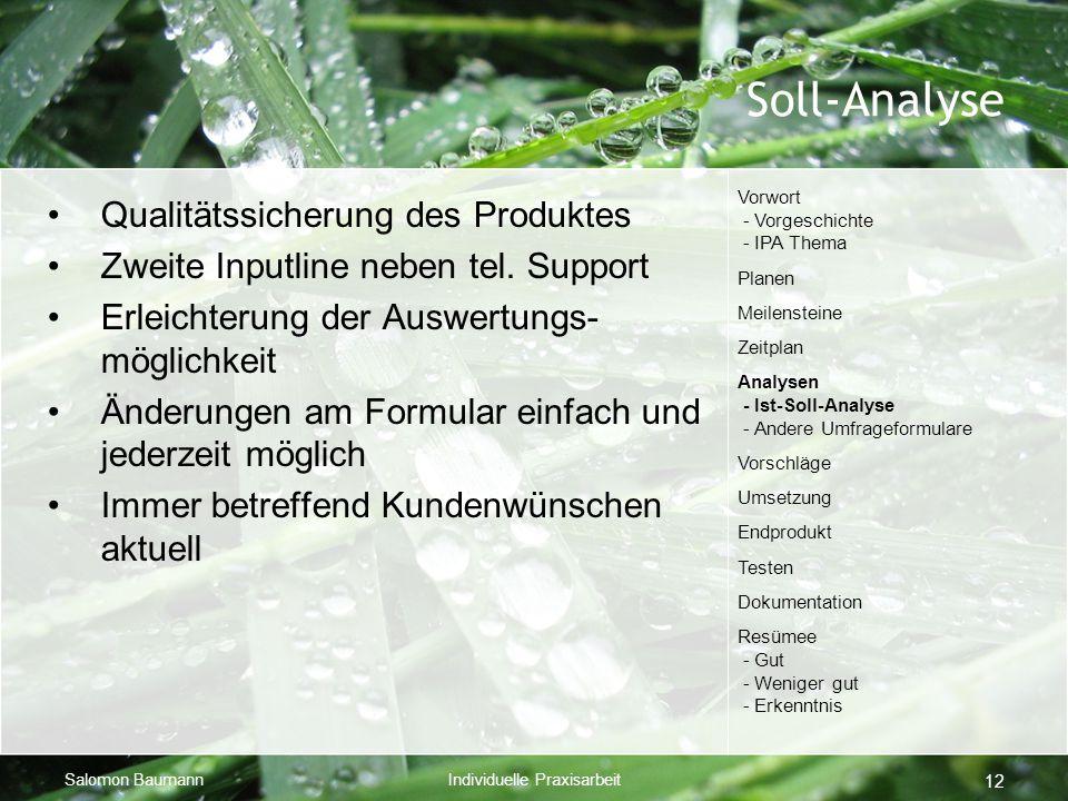 Soll-Analyse Qualitätssicherung des Produktes