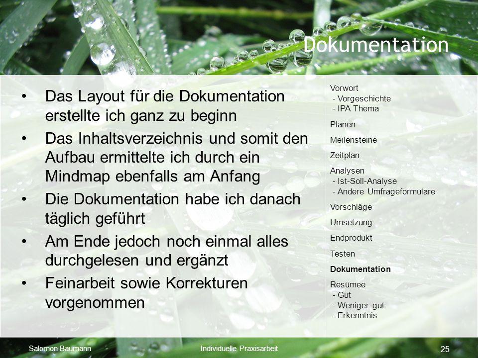 Dokumentation Vorwort - Vorgeschichte - IPA Thema. Planen. Meilensteine. Zeitplan. Analysen - Ist-Soll-Analyse - Andere Umfrageformulare.