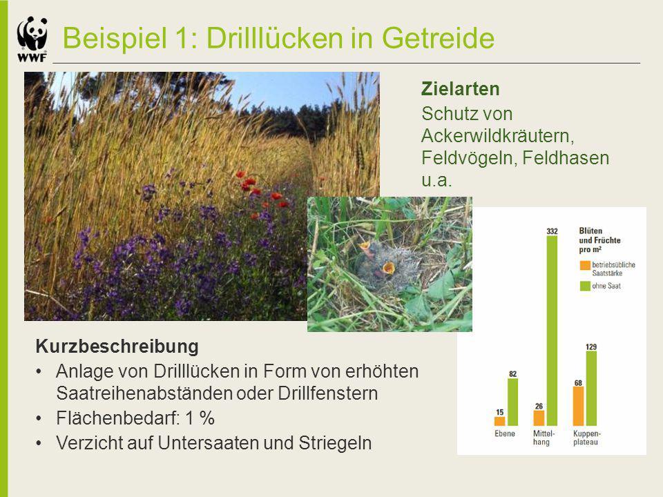 Beispiel 1: Drilllücken in Getreide
