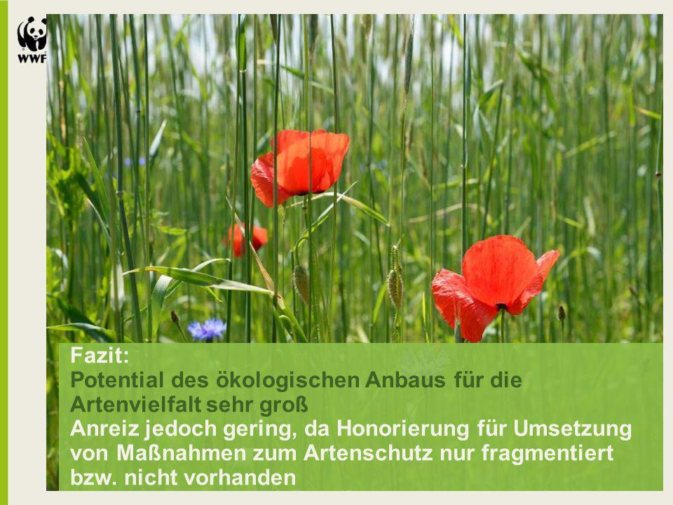 Fazit: Potential des ökologischen Anbaus für die Artenvielfalt sehr groß Anreiz jedoch gering, da Honorierung für Umsetzung von Maßnahmen zum Artenschutz nur fragmentiert bzw.