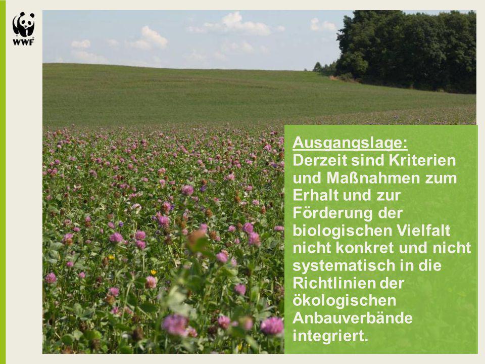 Ausgangslage: Derzeit sind Kriterien und Maßnahmen zum Erhalt und zur Förderung der biologischen Vielfalt nicht konkret und nicht systematisch in die Richtlinien der ökologischen Anbauverbände integriert.