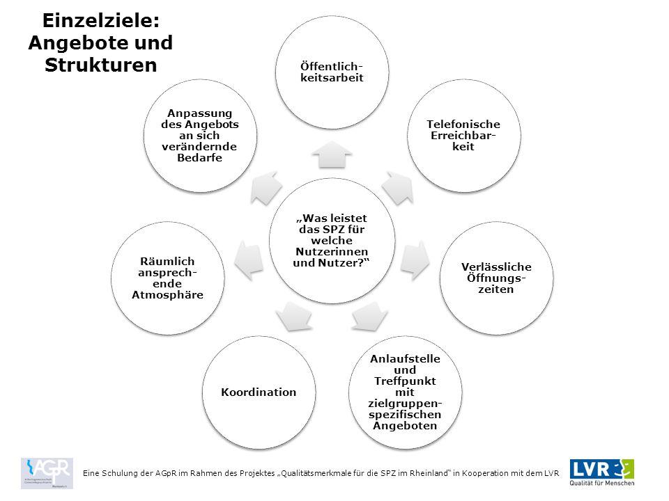 Einzelziele: Angebote und Strukturen