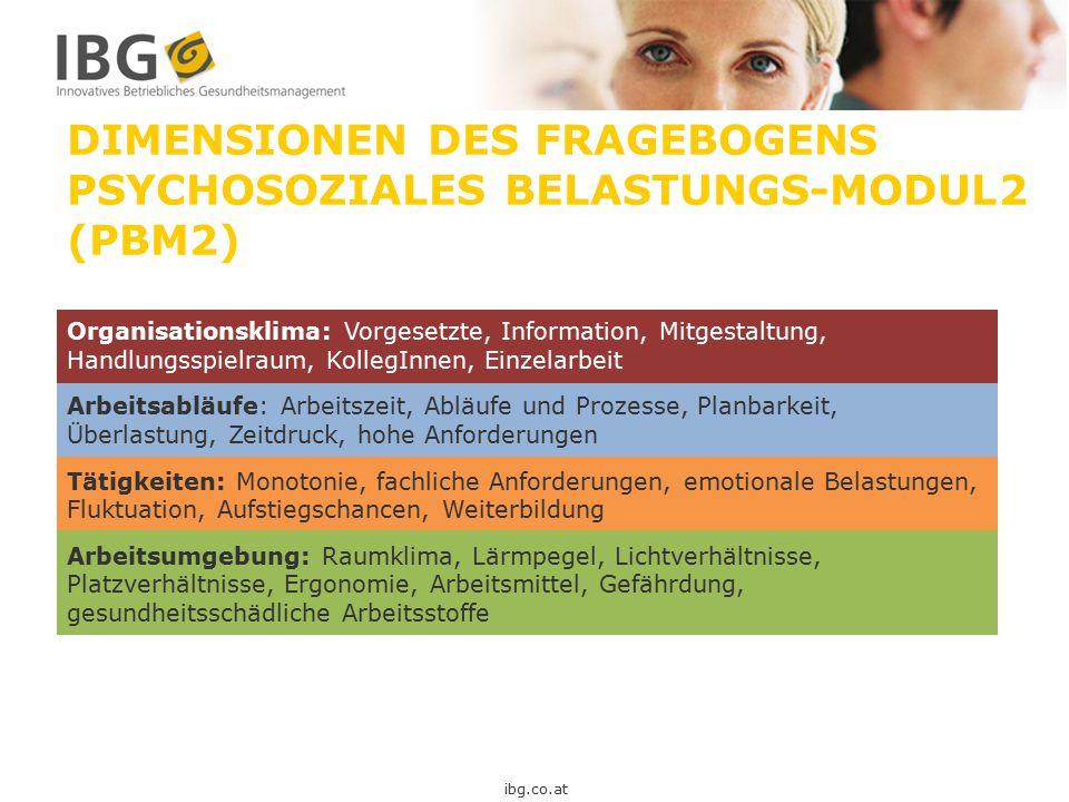 DIMENSIONEN DES FRAGEBOGENS PSYCHOSOZIALES BELASTUNGS-MODUL2 (PBM2)