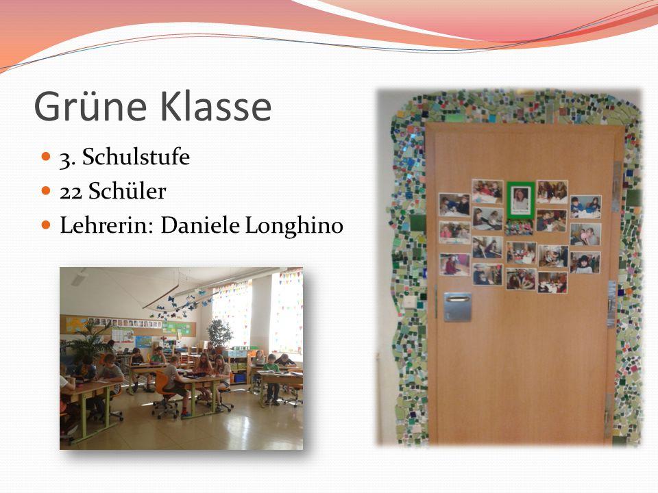 Grüne Klasse 3. Schulstufe 22 Schüler Lehrerin: Daniele Longhino