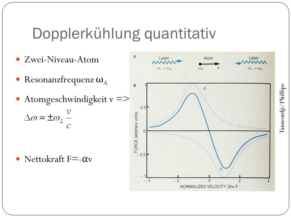 Dopplerkühlung quantitativ