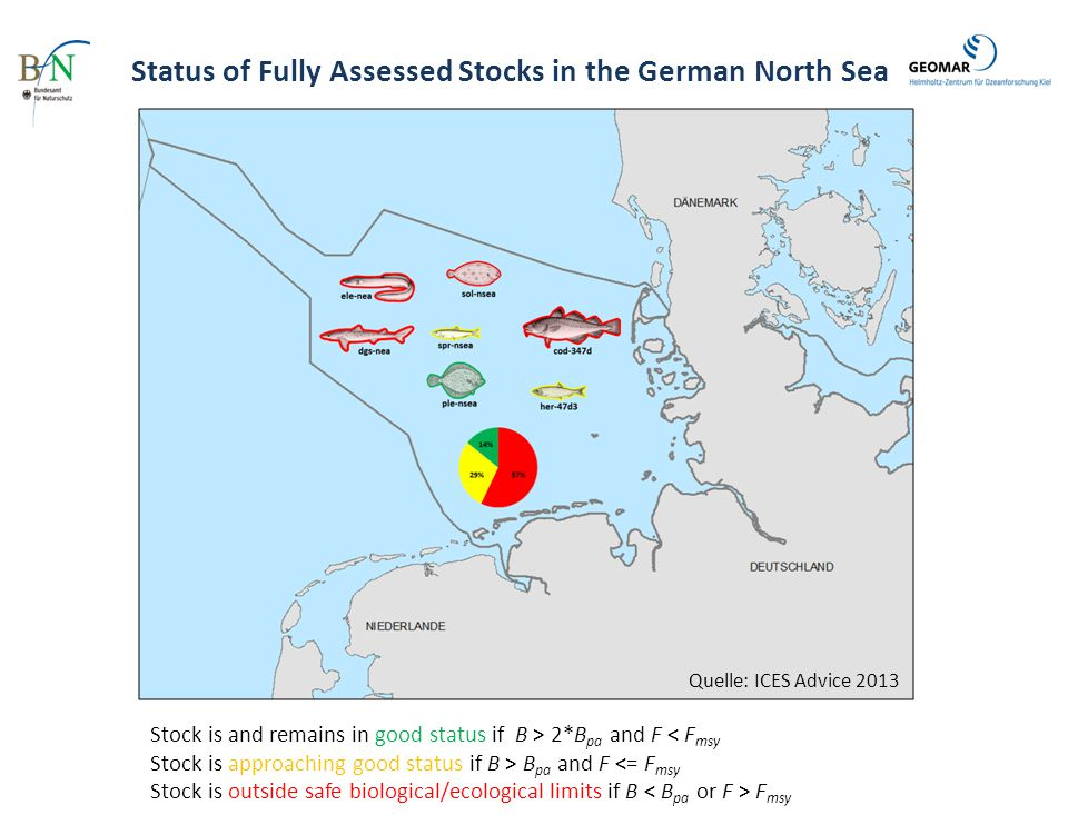 Status of Fully Assessed Stocks in the German North Sea
