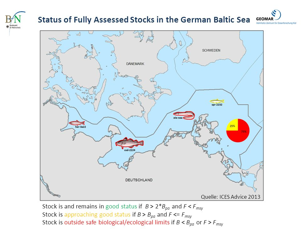Status of Fully Assessed Stocks in the German Baltic Sea