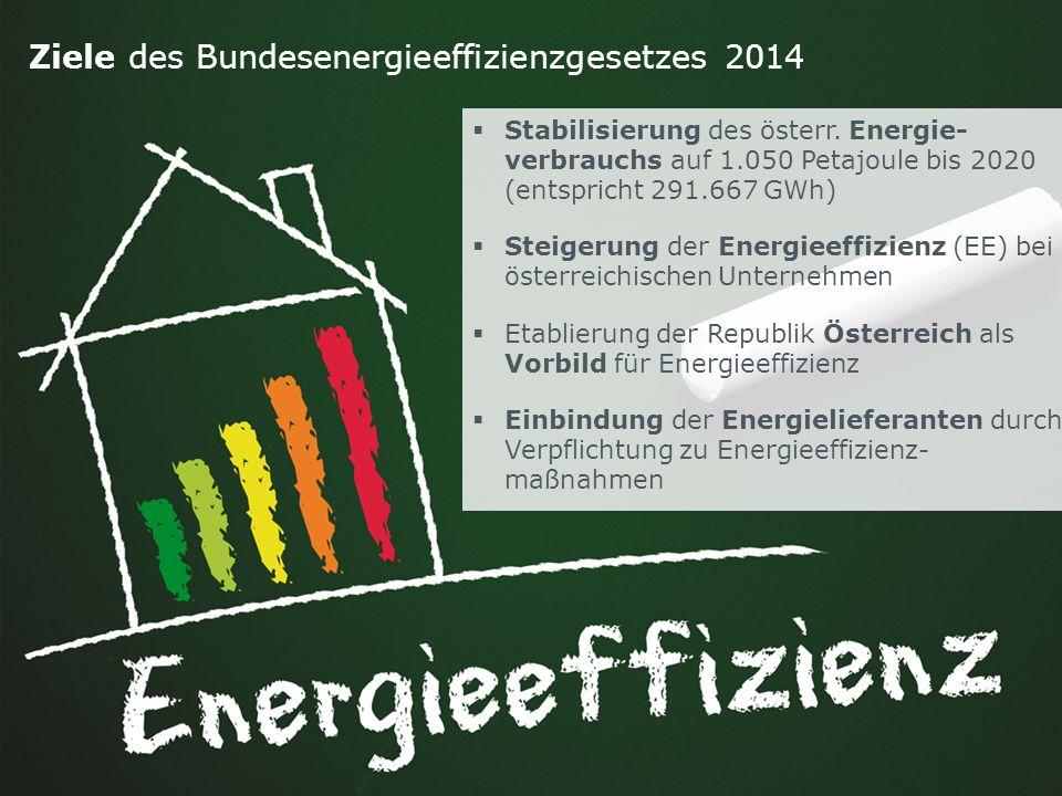 Ziele des Bundesenergieeffizienzgesetzes 2014