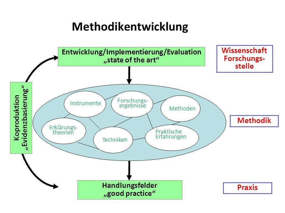 Methodikentwicklung Wissenschaft Forschungs- stelle Methodik Praxis