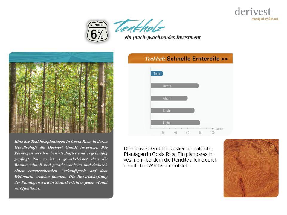 Die Derivest GmbH investiert in Teakholz-