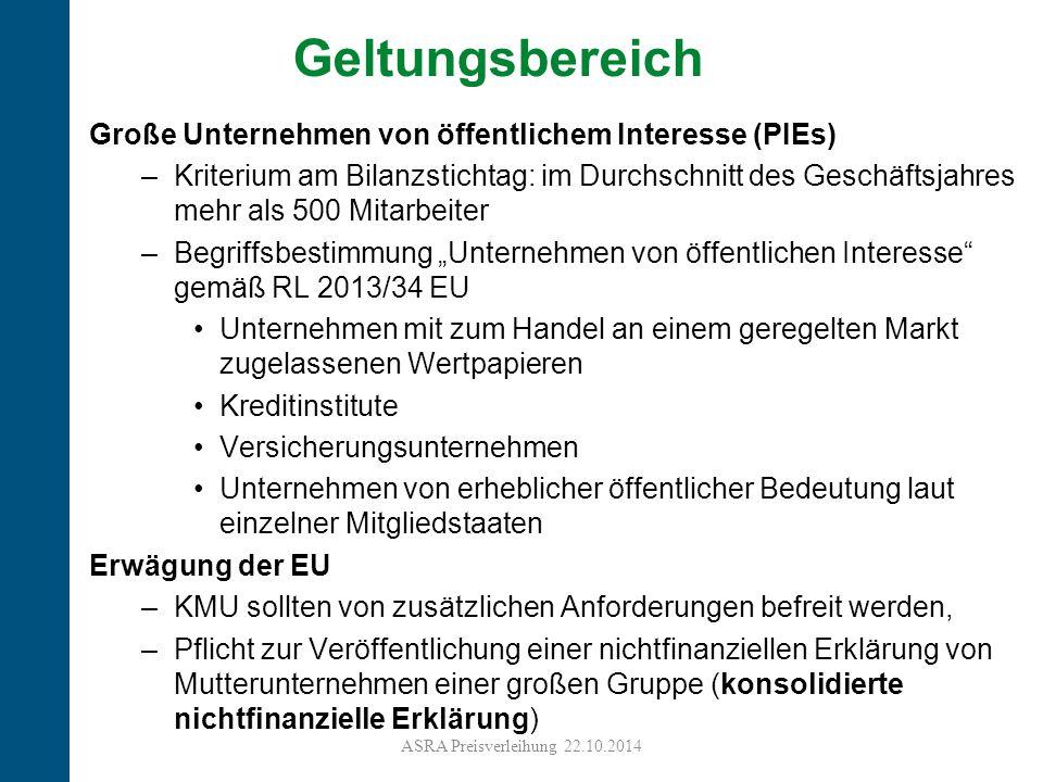 Geltungsbereich Große Unternehmen von öffentlichem Interesse (PIEs)