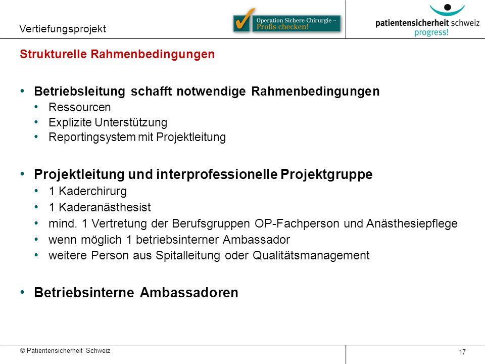 Projektleitung und interprofessionelle Projektgruppe