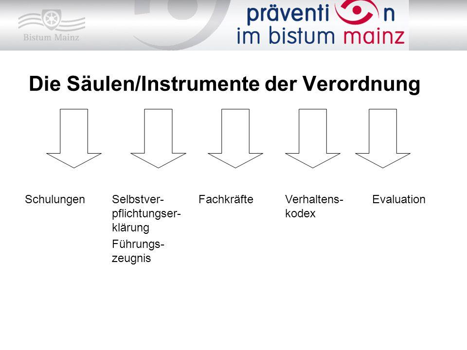 Die Säulen/Instrumente der Verordnung