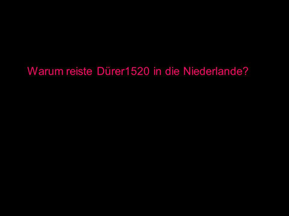 Warum reiste Dürer1520 in die Niederlande