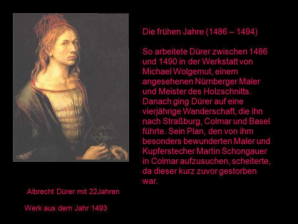Die frühen Jahre (1486 – 1494)
