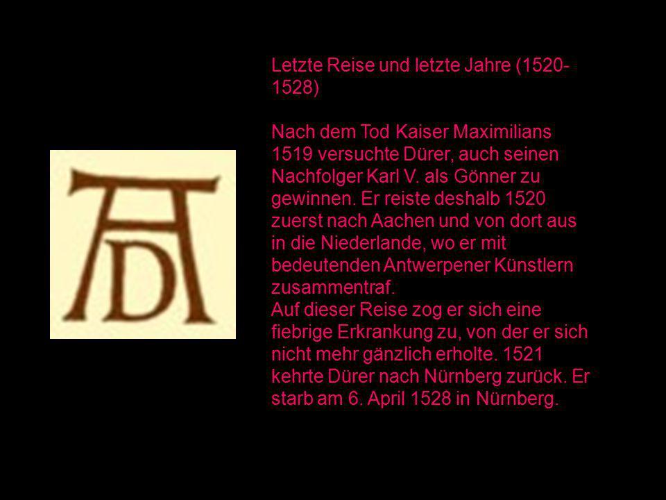 Letzte Reise und letzte Jahre (1520-1528)