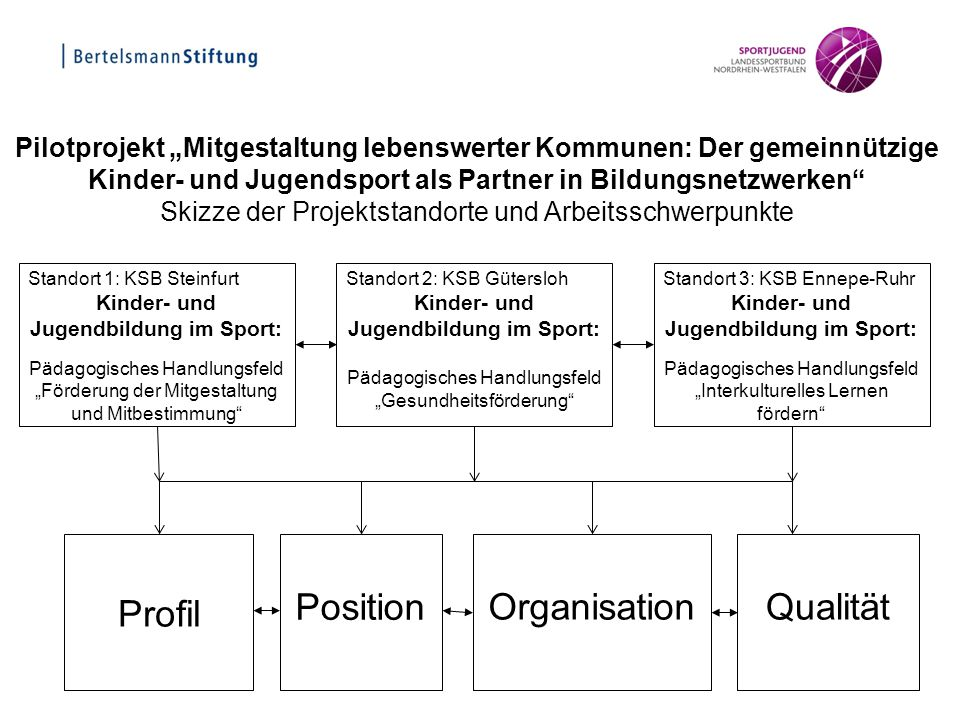 Profil Position Organisation Qualität