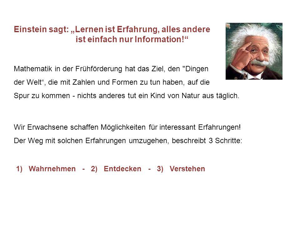 """Einstein sagt: """"Lernen ist Erfahrung, alles andere"""