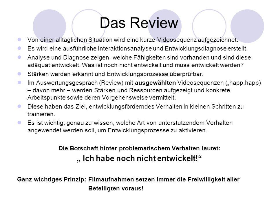 """Das Review """" Ich habe noch nicht entwickelt!"""