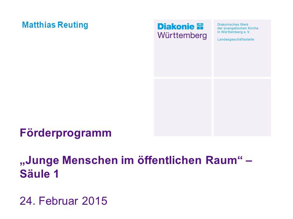 """02.07.2013 Matthias Reuting. Förderprogramm """"Junge Menschen im öffentlichen Raum – Säule 1 24."""