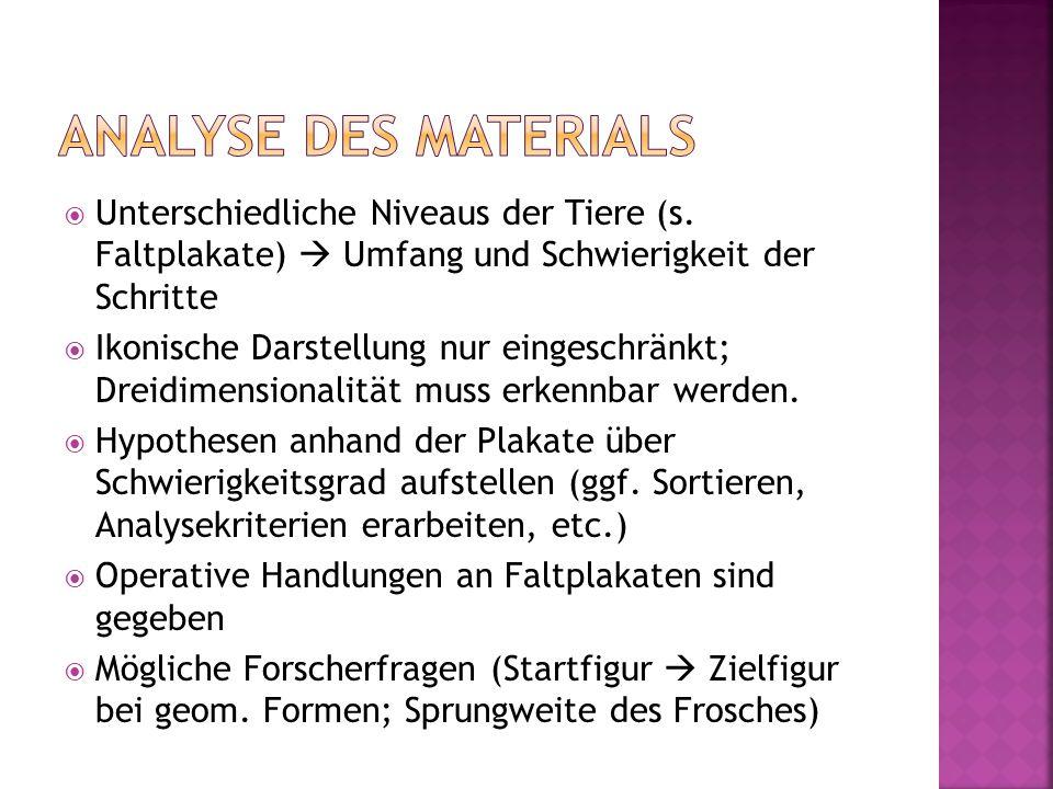 Analyse des Materials Unterschiedliche Niveaus der Tiere (s. Faltplakate)  Umfang und Schwierigkeit der Schritte.