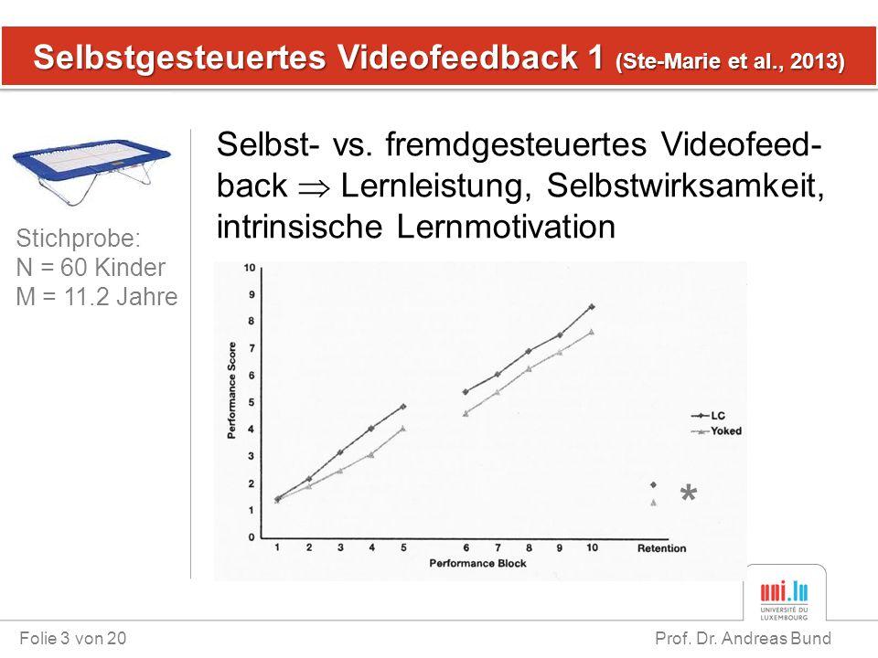 Selbstgesteuertes Videofeedback 1 (Ste-Marie et al., 2013)