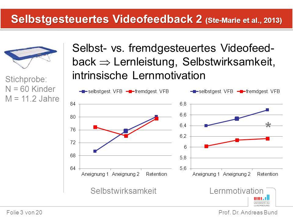 Selbstgesteuertes Videofeedback 2 (Ste-Marie et al., 2013)