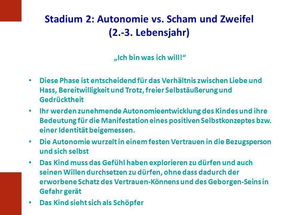 Stadium 2: Autonomie vs. Scham und Zweifel (2.-3. Lebensjahr)