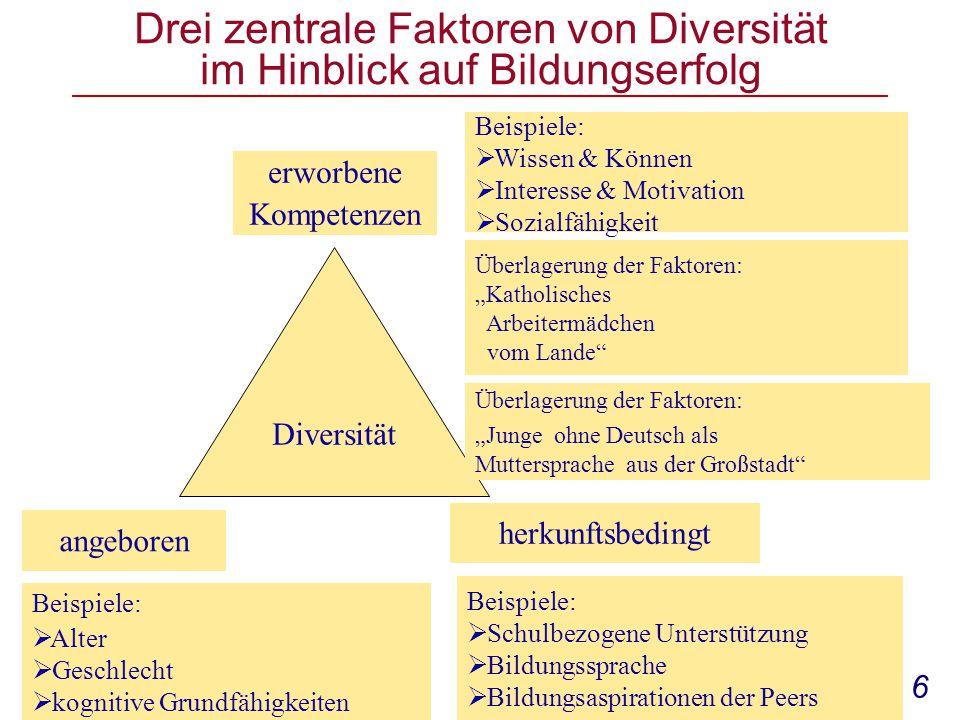 Drei zentrale Faktoren von Diversität im Hinblick auf Bildungserfolg
