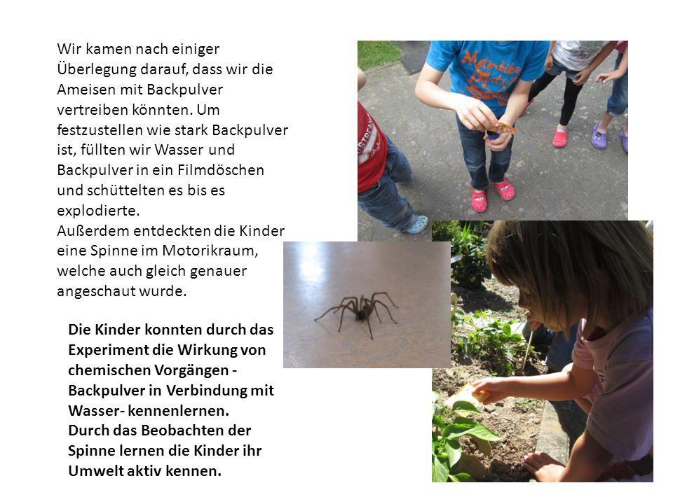 Wir kamen nach einiger Überlegung darauf, dass wir die Ameisen mit Backpulver vertreiben könnten. Um festzustellen wie stark Backpulver ist, füllten wir Wasser und Backpulver in ein Filmdöschen und schüttelten es bis es explodierte.