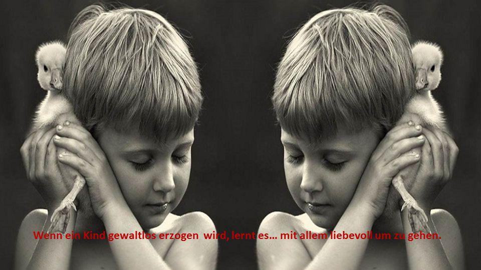 Wenn ein Kind gewaltlos erzogen wird, lernt es… mit allem liebevoll um zu gehen.