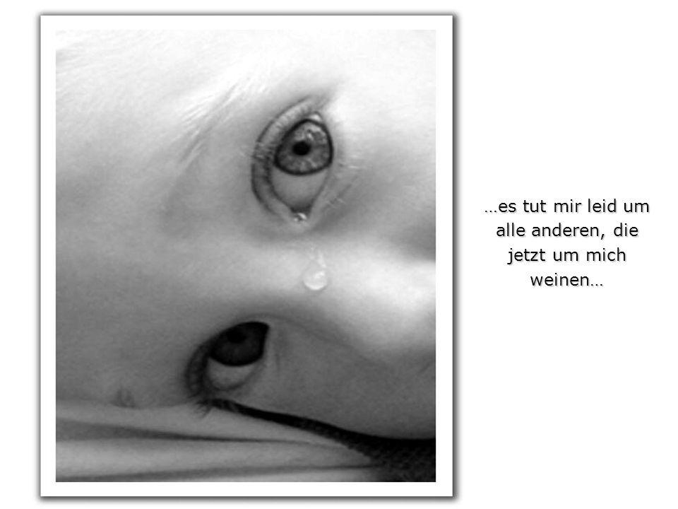 …es tut mir leid um alle anderen, die jetzt um mich weinen…